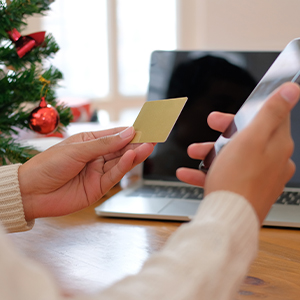 Image of Early Holiday E-Commerce Fraud on the Rise