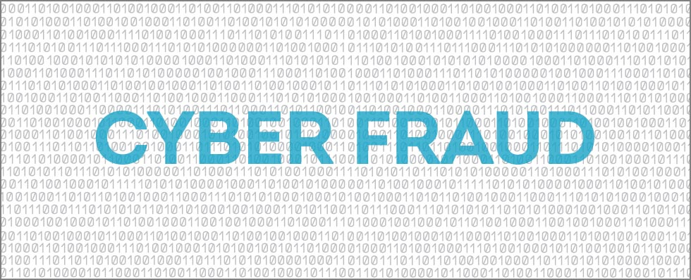 Cyber Fraud blog image