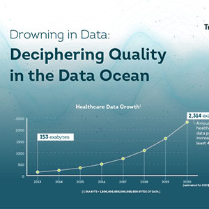 Drowning in Data: Deciphering Quality in the Data Ocean